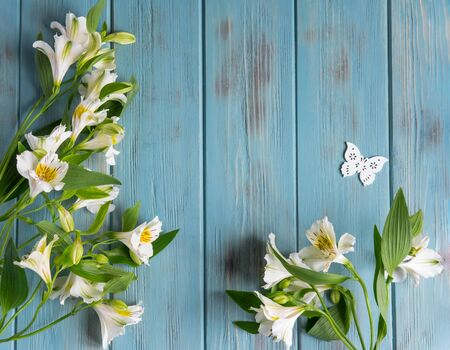 Background for text banner on a blue wooden background with white flowers and butterflies. Blank, frame for text. Greeting card design with flowers. Alstroemeria on wooden background.