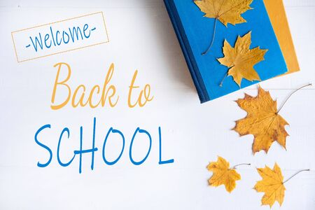 The basis for the banner back to school. Autumn frame for text with yellow leaves and books. An end to the theme of school and learning