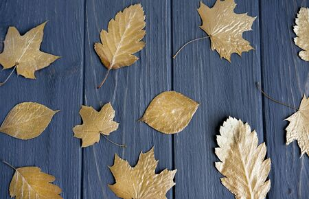 Golden leaves on a gray wooden background. Autumn pattern with gold leaves for website, greeting card Фото со стока