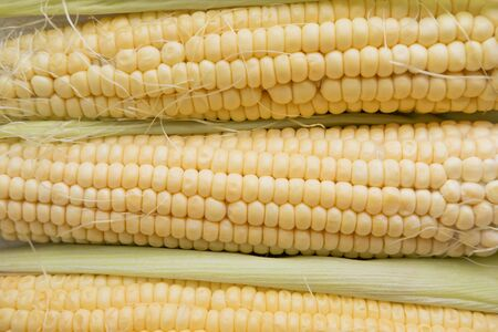Background with fresh corn close-up.