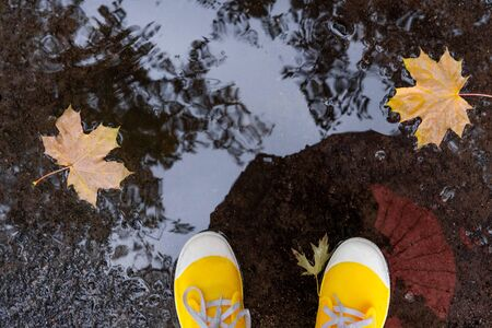 Autumn puddles and rains. Part of female legs in yellow rubber boots in a puddle. Change of seasons and segoz of rains i