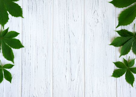 Chestnut leaves on the sides of a light wooden background. Spring frame for text with chestnut leaves. Flat lay, top view.