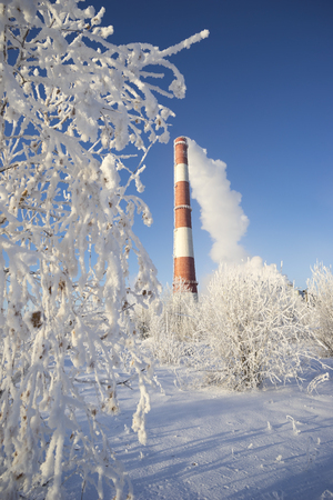 trees services: Municipal boiler room in a Sunny day in winter.