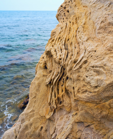 tectonics: Boulder of Sandstone on the shores of the Black sea.