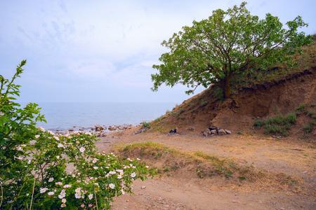 calais: A picturesque place near the sea. Chaban - Calais. Stock Photo