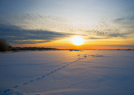 ray trace: Bright sun at sunset in winter with the road and the footprints in the snow. Stock Photo