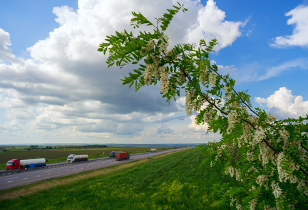hauler: Highway M4 don, summer day, from passing cars