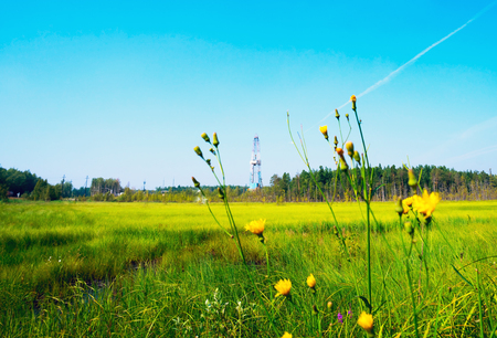 Drilling rig among the marsh grass and flowers . Siberia. Stock Photo