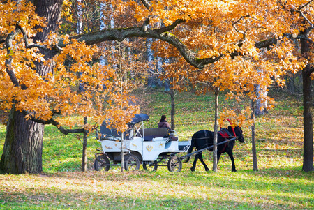 The white carriage with a black horse in the Park. Autumn landscape.