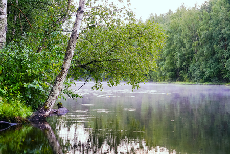 Calm lake with fog over the water after the rain .Russia, Leningrad Region. Stok Fotoğraf