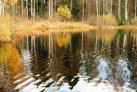 Reflection of the autumn shore in the water of the forest lake. Autumn landscape