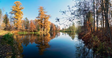Picturesque autumn landscape. Yellow trees are reflected in the water of a small pond. Panorama. Stock fotó