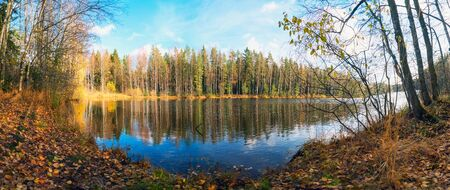 Panorama of the autumn coast with reflection in the water of a forest lake. Autumn landscape.