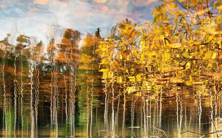 Water surface with reflection of autumn trees. Background.