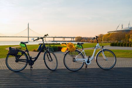 Two bikes with yellow leaves on the trunk. Krestovsky island . Saint Petersburg
