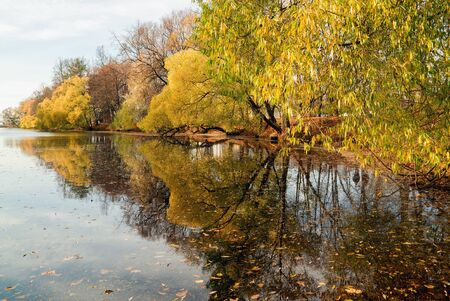 The pond in the late autumn .Elagin island. Saint-Petersburg Stock fotó - 133249293