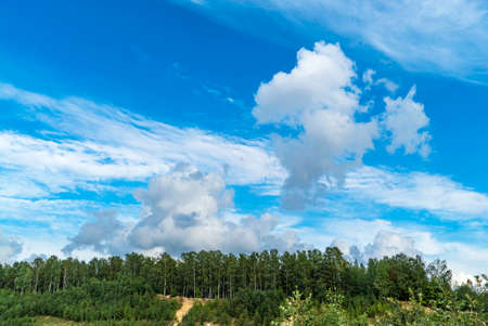 Blue sky with white clouds over the forest in summer.