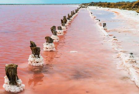 Beautiful pink lake Sasyk-Sivash in the Western part of the Crimean Peninsula