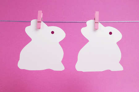 Pink theme two bunny rabbit shape Easter cards hanging from pegs on a line, with copy space for your text here  photo