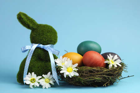 Blue theme Happy Easter scene still life with grass bunny rabbit with rainbow color eggs in a nest with white daisies Stock Photo - 17746802