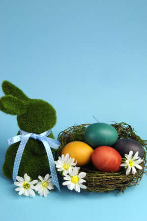 Blue theme Happy Easter scene still life with grass bunny rabbit with rainbow color eggs in a nest with white daisies  Vertical with copy space  photo