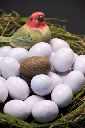 Close-up of chocolate Easter egg among sugar coated candy marble eggs in moss birds nest against a black background  Vertical portrait orientation  photo