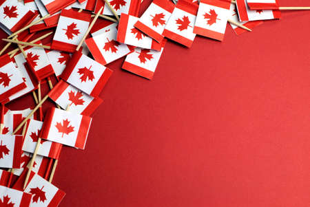 canada flag: Abstract background of Canada red and white Maple Leaf national toothpick flags for national emblem or public holiday event, with copy space for your text here  Stock Photo