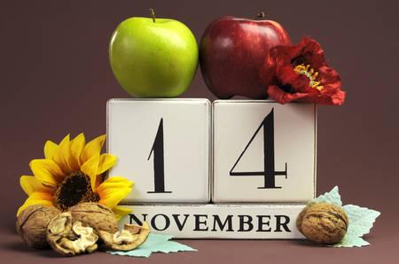 calendario noviembre: Guardar el calendario individuo estacional Fecha para el 14 de noviembre con los colores del otoño, frutas y flores de otoño tema para los cumpleaños, ocasiones especiales individuales, fiestas y eventos. Foto de archivo