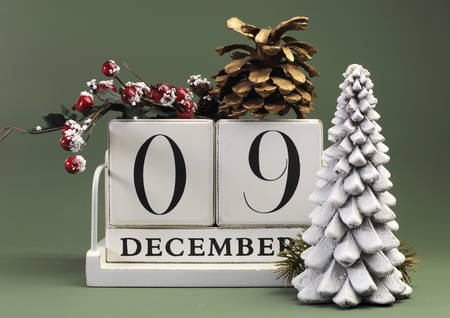 Save the Date calendar with Winter theme colors, fruit and flowers, for birthdays, special occasions, holidays, weddings, website events, or Christmas Advent calendar days, for December 9.