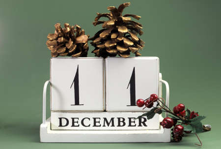 Save the Date calendar with Winter theme colors, fruit and flowers, for birthdays, special occasions, holidays, weddings, website events, or Christmas Advent calendar days, for December 11 Stock Photo - 23449691