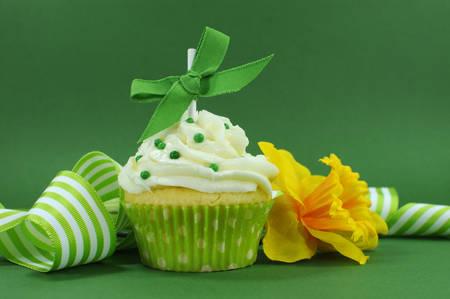 Beautiful green decorated cupcake with daffodil and stripe ribbon on green for Spring, St Patricks Day or birthday party  photo