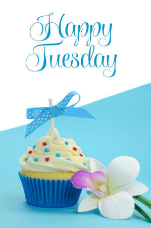 Beautiful blue cupcake with orchid flower on blue , with Happy Tuesday sample text or copy space for your text here  photo