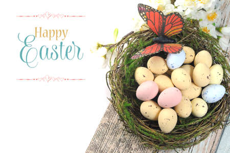 egg hunt: Happy Easter shabby chic table with speckled birds eggs and butterfly in nest with spring blossoms and sample text or copy space for your text here  Stock Photo