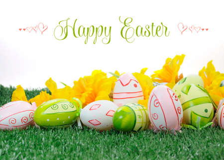 Happy Easter colorful pink and green Easter Eggs with yellow daffodils on green grass against white background photo
