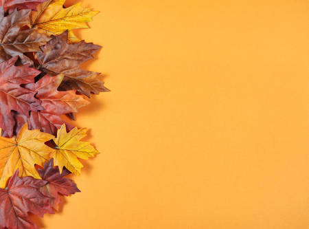 Autumn Leaves on modern trend orange background for Fall, Thanksgiving, or Halloween holiday backgrounds. Imagens