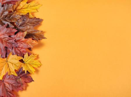 naranja fruta: Hojas de oto�o sobre fondo naranja tendencia moderna de fondos de vacaciones de oto�o, acci�n de gracias, o Halloween.