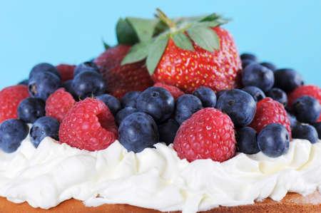 Fresh whipped cream and berries layer sponge cake closeup. photo