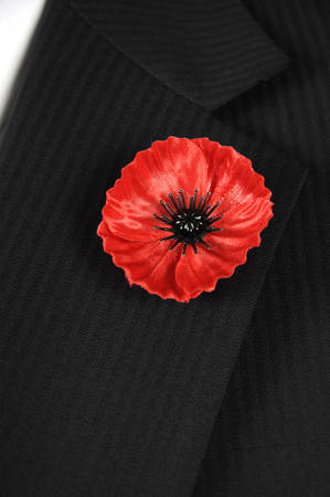 armistice: November 11, Armistice Day, Red Poppy for Lest We Forget remembrance, closeup on button hole of man with black suit, white shirt and red tie. Vertical. Stock Photo