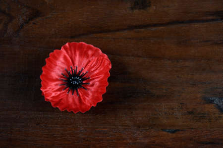 Lest We Forget, Red Flanders Poppy Lapel Pin Badge for November 11, Remembrance Day appeal, on dark recycled wood background, with copy space. Stock Photo