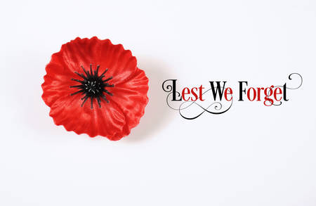 anzac: Lest We Forget, Red Flanders Poppy Lapel Pin Badge for November 11, Remembrance Day appeal. on white background with Lest We Forget sample text. Stock Photo