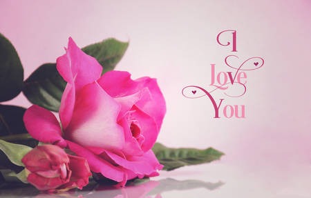 Happy Valentines Day greeting with retro vintage style pink rose with I Love You sample text greeting message. photo