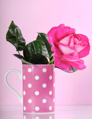 Beautiful pink rose gift in polka dot coffee cup on feminine pink background. photo