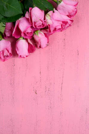 Pink Roses on pink wood background, vertical with copy space for your text here.
