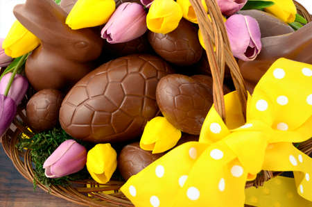 Happy Easter chocolate hamper of eggs and bunny rabbits in large basket with yellow and pink purple silk tulip flowers on dark wood table, overhead.