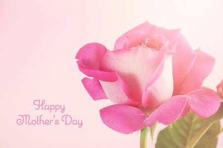 mothering: Happy Mothers Day gift of a single pink rose with sample text, and applied retro vintage style filters and added lens flare. Stock Photo