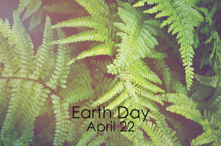 yellow earth: Earth Day, April 22, Concept with image of green ferns with applied retro vintage style filters and added light stream.