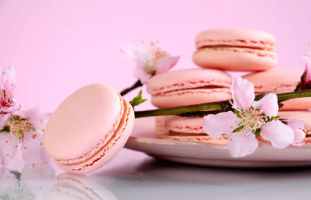 afternoon tea: Shabby chic vintage style pink macarons on white reflective table and pink Spring blossom.