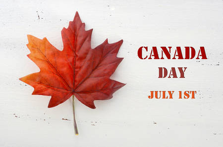 dominion: Happy Canada Day red silk maple leaf  on white wood shabby chic table with Canada Day, July 1st, text greeting.
