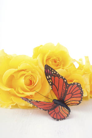 rose coloured: Beautiful yellow roses, the symbol of love and friendship, with monarch butterfly on rustic wood table.