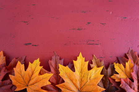 Autumn Fall background for Thanksgiving or Halloween with leaves and decorations on rustic wood table with copy space for your text here. Banco de Imagens